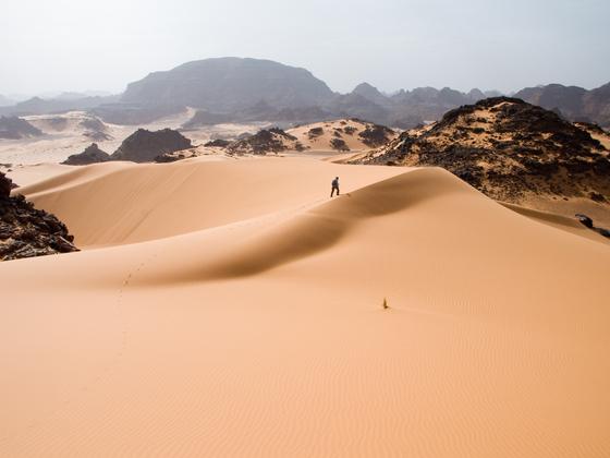 人生を懸ける!19歳青年のサハラ砂漠2000㎞、縦断プロジェクト!
