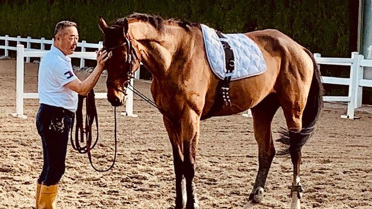 引退競走馬のセカンドキャリアを支援