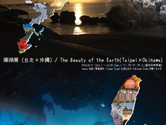 海を挟んだ沖縄と台湾を結んで海とサンゴの展覧会を開きたい