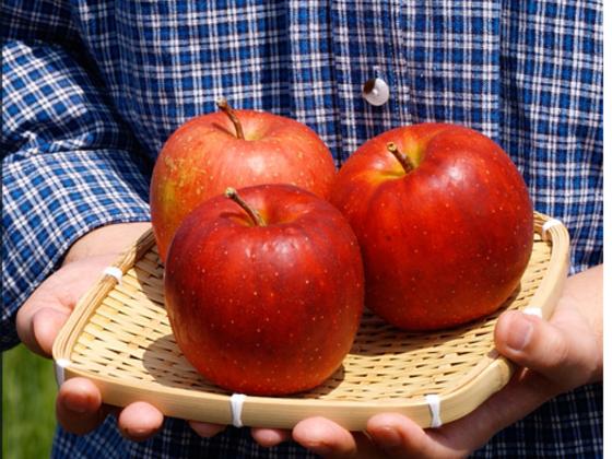 青森からまっ赤な農薬不使用りんごを全国の皆さまにお届けしたい