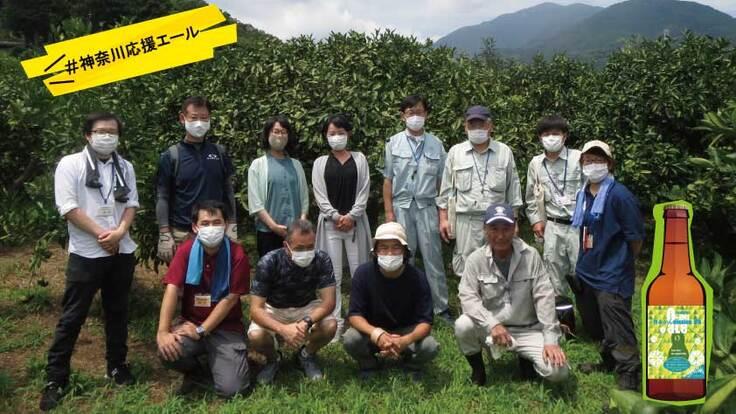 神奈川県伊勢原市 大山の麓、鳥獣被害に立向かう農家を応援するビール