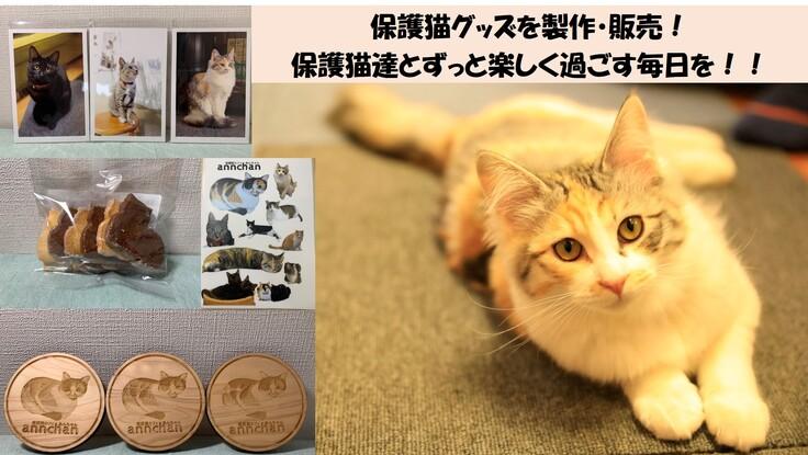 [保護猫カフェあんちゃん] 保護猫達の為に猫グッズ製作・販売