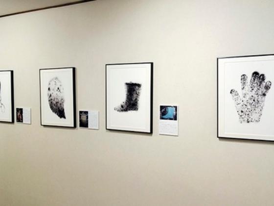 「放射線像」写真展の首都圏リレー開催を実現したい!