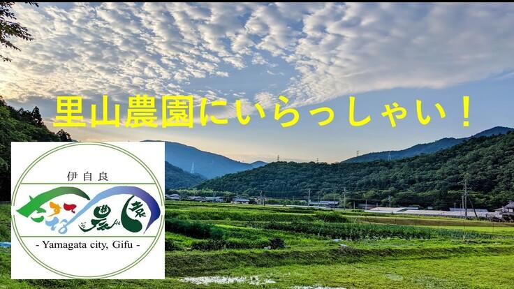 新規プロジェクト 里山農園へいらっしゃい!  伊自良さすてな農園