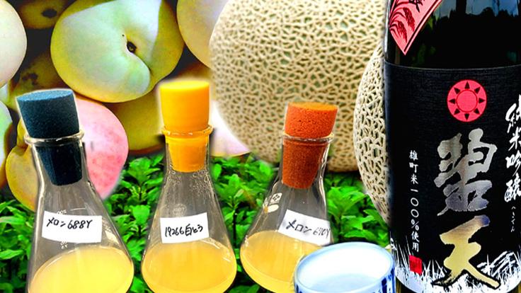 フルーツ大国岡山ならではの酒造りを。果物の野生酵母でつくる日本酒
