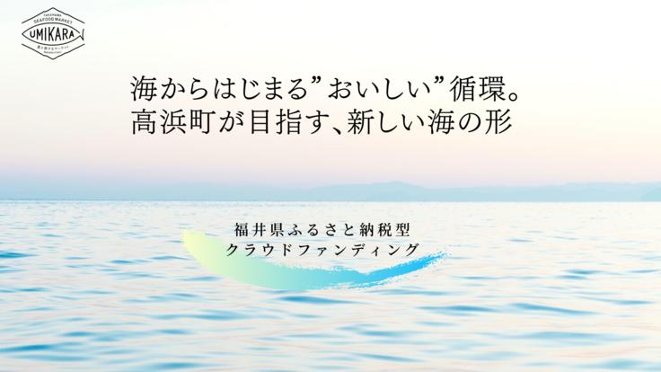 """「世界が認めた美しい海」高浜町から""""おいしい循環""""を拡げたい!"""