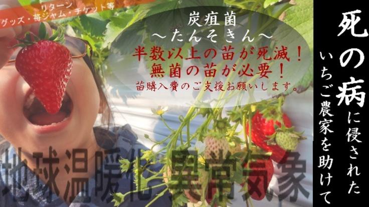 【異常気象】【死の病】炭疽菌~たんそきん~に侵された農家を助けて!
