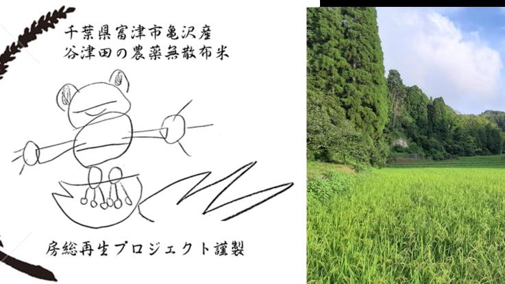 【農薬無散布】房総の里山の保全・生命の多様性を復元する米作り