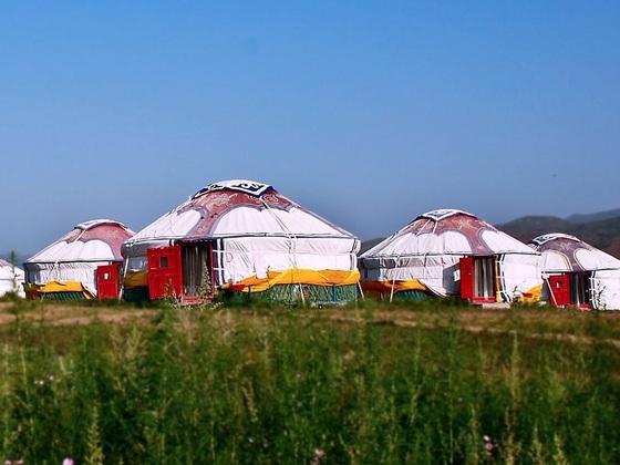 愛知県に日本と故郷の架け橋として「モンゴル村」を作りたい!