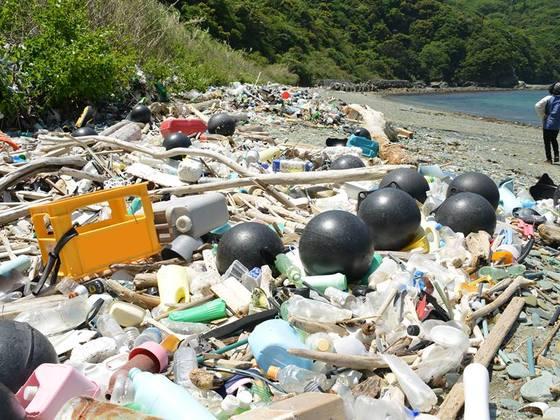 日本中の、拾えない場所の漂着ゴミを拾いたい。