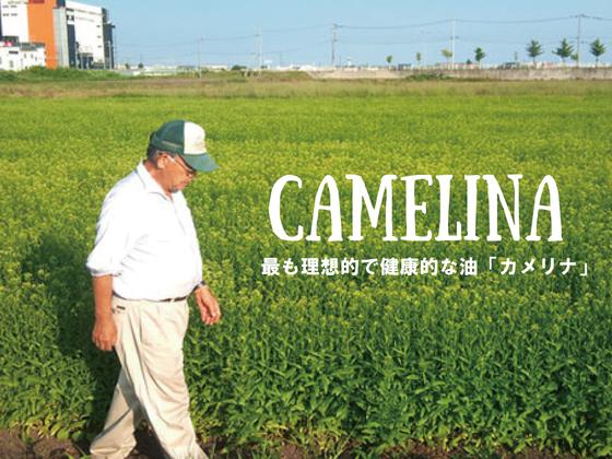 北海道の限界集落で、奇跡の油・国産のカメリナオイルを作りたい