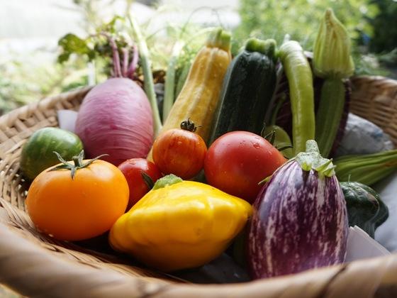 石井農園のイタリア野菜でいつもの食事を、ぐっとおしゃれに。