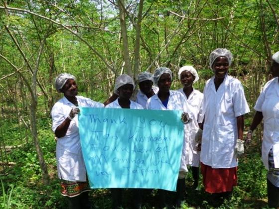 ガーナのモリンガ農園で働く女性達のスキルアップ研修費募集!