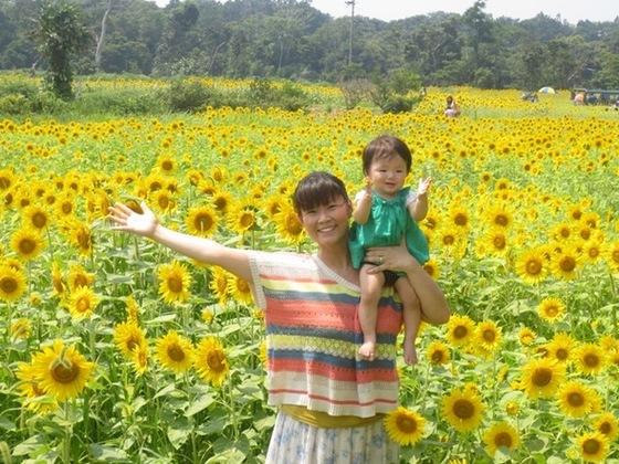 夏は浜名湖ひまわり畑へ!ひまわり専門WEBショップ立上げたい!