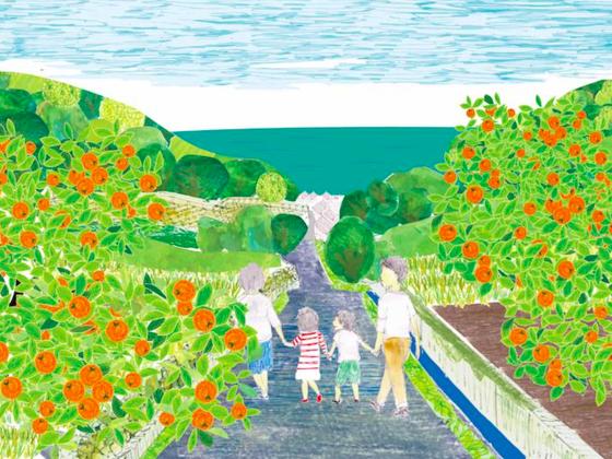柑橘畑よ、よみがえれ。広島県内海町の柑橘を復活させたい!