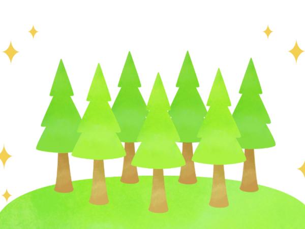 人工林の適正な伐採で健やかな森へ