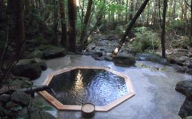 【ゆパッチーに会いにきて!】土湯温泉堪能コース