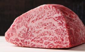 【県外の方にオススメ!鳥取の食でチームを応援コース】肉質日本一!鳥取和牛1kg