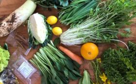 【おすすめ】旬の無農薬野菜&無農薬米(2㎏)セット