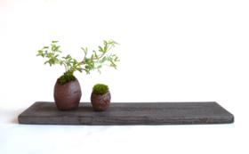 【taolivingdesign 会員証】おしゃれな陶器を永久20%オフでご提供!