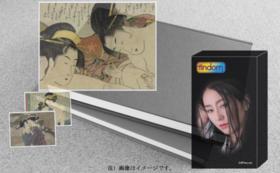 【台湾向け:住在台灣的對象方案】フィンドム24ピース×6箱+写真資料集『浮世に咲く百合』