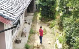 串本町の作物詰め合わせセット