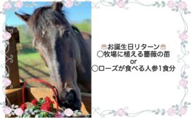 Happy Birthday toローズ~牧場に薔薇を~【5/10~5/17限定リターン】
