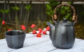 【お得な送料無料】お好きなお茶2種類と急須&湯のみセット<高級茶体験コース>