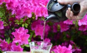 【お得なセット価格と送料無料】お茶4種類と急須&湯のみセット<高級茶体験コース>