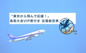 【VIP席を用意】現地で応援!東京からの往復航空券付き】