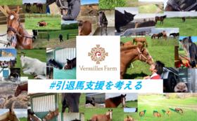 引退馬支援の未来を作る全力応援コース