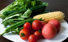 【おすすめ】<遠方の方向け>自慢の佐賀県産 季節の野菜盛り合わせ(3種)