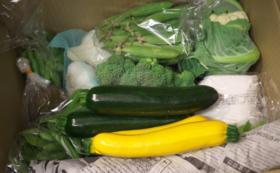 <遠方の方向け>自慢の野菜(5種)とバージンオリーブオイルセット