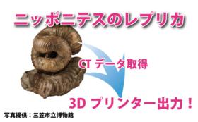 ニッポニテスの3D模型(3Dプリンター印刷)