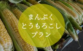 まんぷくとうもろこしプラン(10本セット・送料込み)