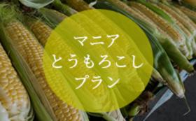 マニアとうもろこしプラン(70本セット・3回分送料込み)