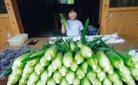 【1組限定】古民家滞在+トウモロコシ農家体験の2泊3日宿泊プラン!