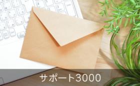 サンクス&活動報告メール(サポート3000)