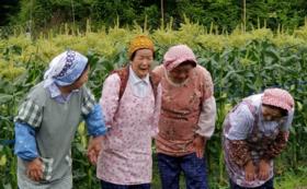 【5人限定】高橋農家ファッション3点セット