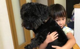 【保護犬の名付け親になって応援!】命名権