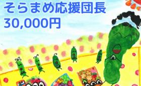 【絵本1冊】そらまめ応援団長