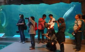 旭山動物園のポスター写真を担当する写真家による「撮影教室」開催