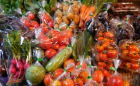 【手塚夫婦を食べて応援/大満足セット】旬のオーガニック野菜とパスタセット