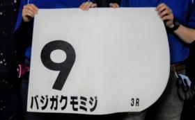 大井競馬3Rのバジガクモミジ(松崎正泰騎手)のゼッケン