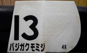 大井競馬4Rのバジガクモミジ(松崎正泰騎手)のゼッケン
