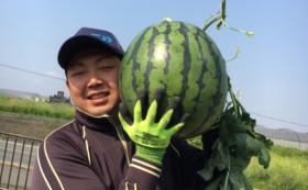 【スイカを食べて応援!】日本一の大玉スイカ 厳選プレミアム
