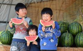 【スイカを食べて応援!】日本一の大玉スイカ2個セット 厳選プレミアム