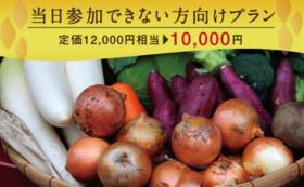 【イベント当日参加できない方】行方市産季節のお野菜お届け 年4回