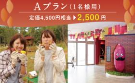 【定価4500円相当が2500円!】世界一のいも掘り参加プラン(1名様用)