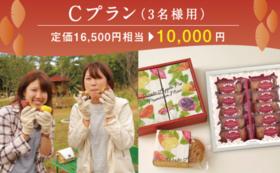 【定価16500円相当が10000円】世界一のいも掘り参加プラン(3名様用)